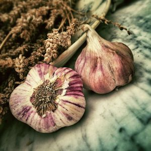 garlic , ช่วยลดไขมันในเลือด , กระเทียม, คุณธนอรรถ ตรีธิติธัญ