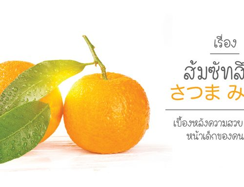ส้มซัทสึมะ เบื้องหลังความสวย ผิวเนียน หน้าเด็กของคนญี่ปุ่น
