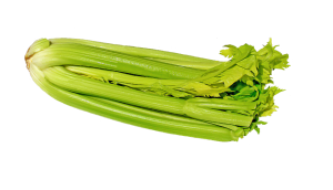 โรคความดันโลหิตสูง , ok herbs, คุณธนอรรถ ตรีธิติธัญ , celery