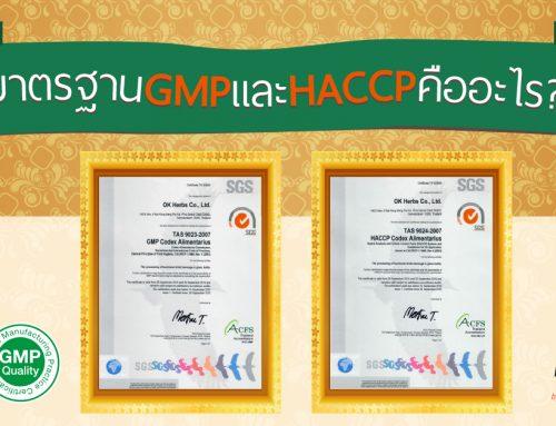 มาตรฐาน GMP และ HACCP คืออะไร ??