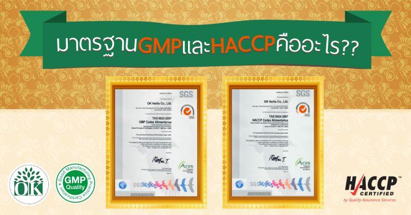 มาตรฐาน GMP , มาตรฐาน GMP และ HACCP