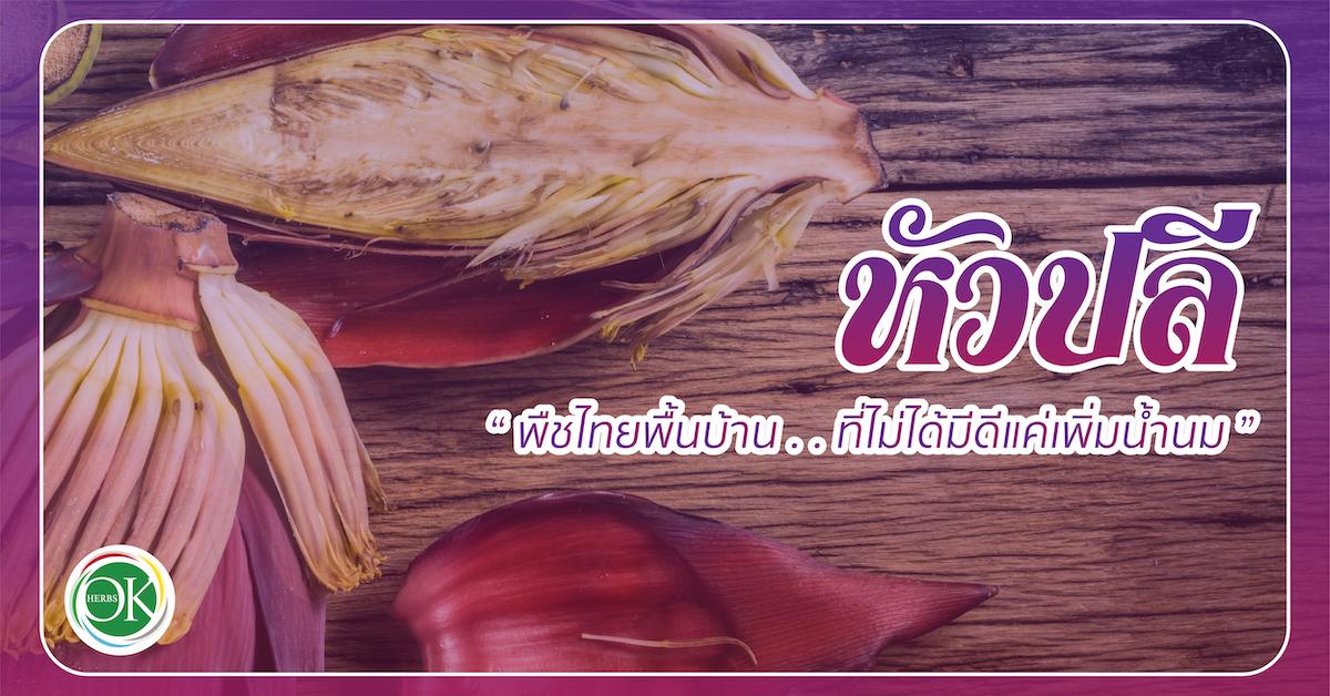 หัวปลี พืชไทยพื้นบ้านที่ไม่ได้มีดีแค่เพิ่มน้ำนม