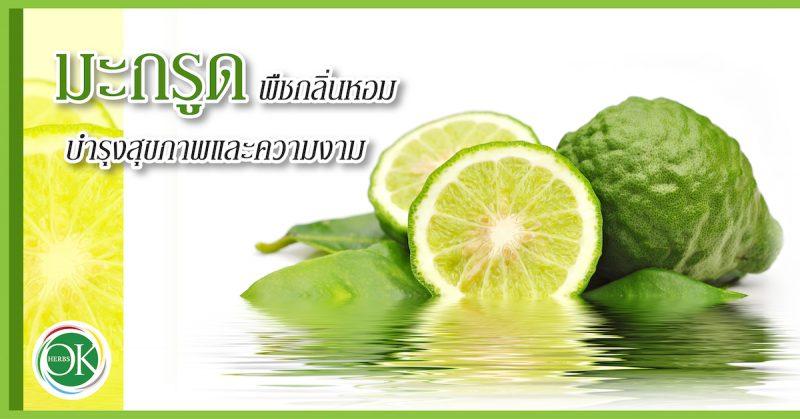 มะกรูด พืชกลิ่นหอม บำรุงสุขภาพและความงาม