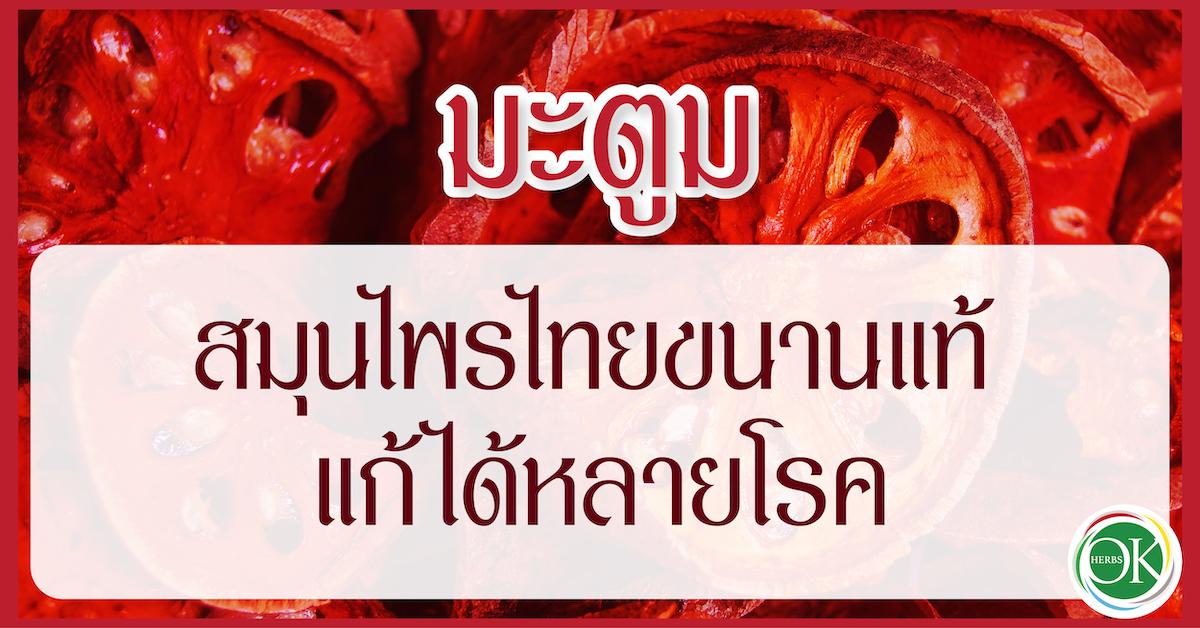 มะตูม สมุนไพรไทยขนานแท้ แก้ได้หลายโรค